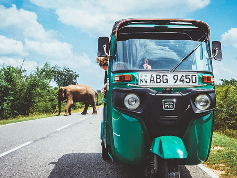 Image of The TukTuk Trip